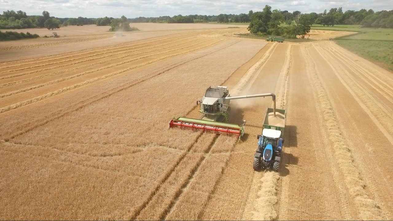 GRASSMEN TV - Thoughts on the TW-35 and TW-230 at A.L. Wilkinson Farming