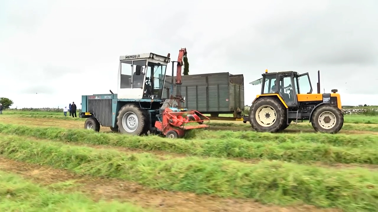 Old School (Dunmore History Of Silage)