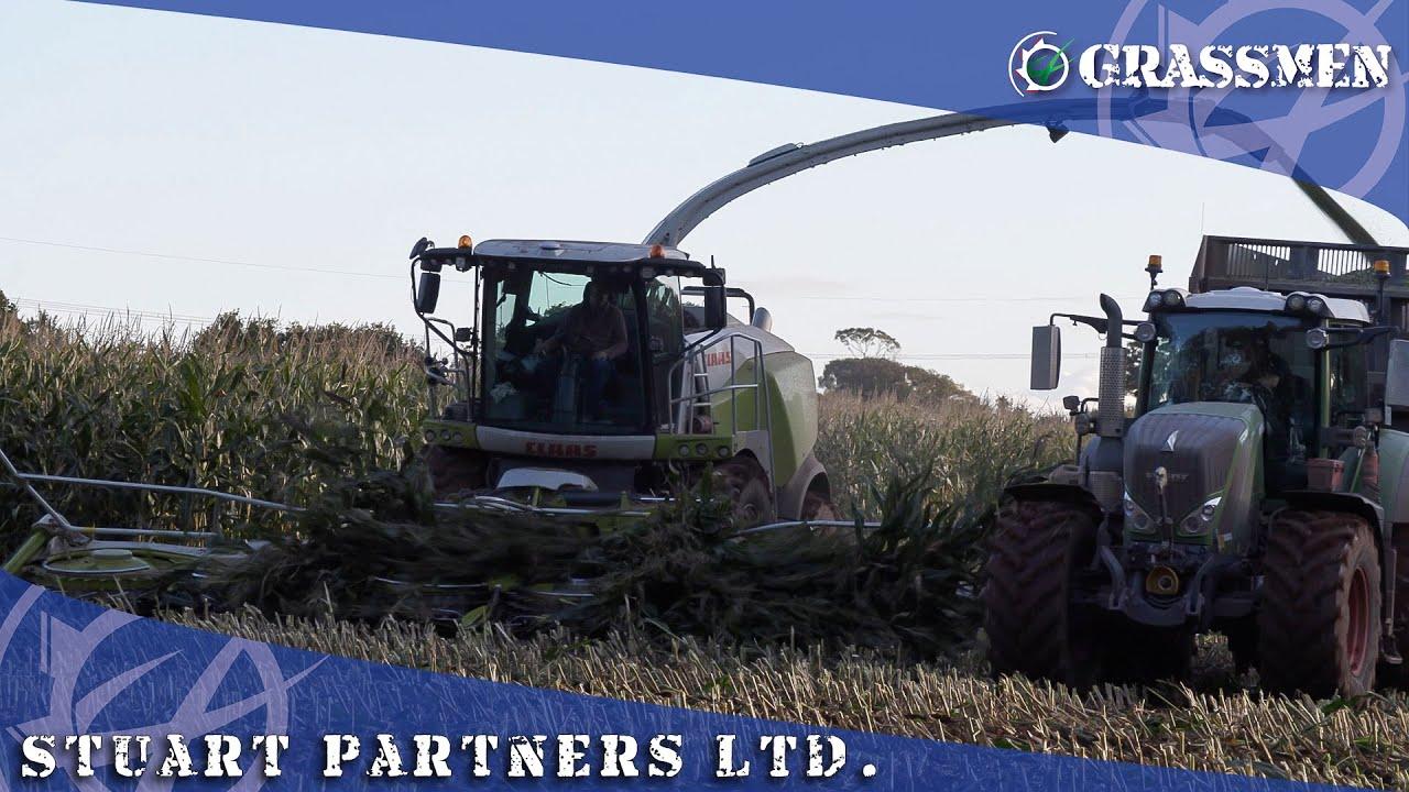 Checking out Stuart Partners Ltd.