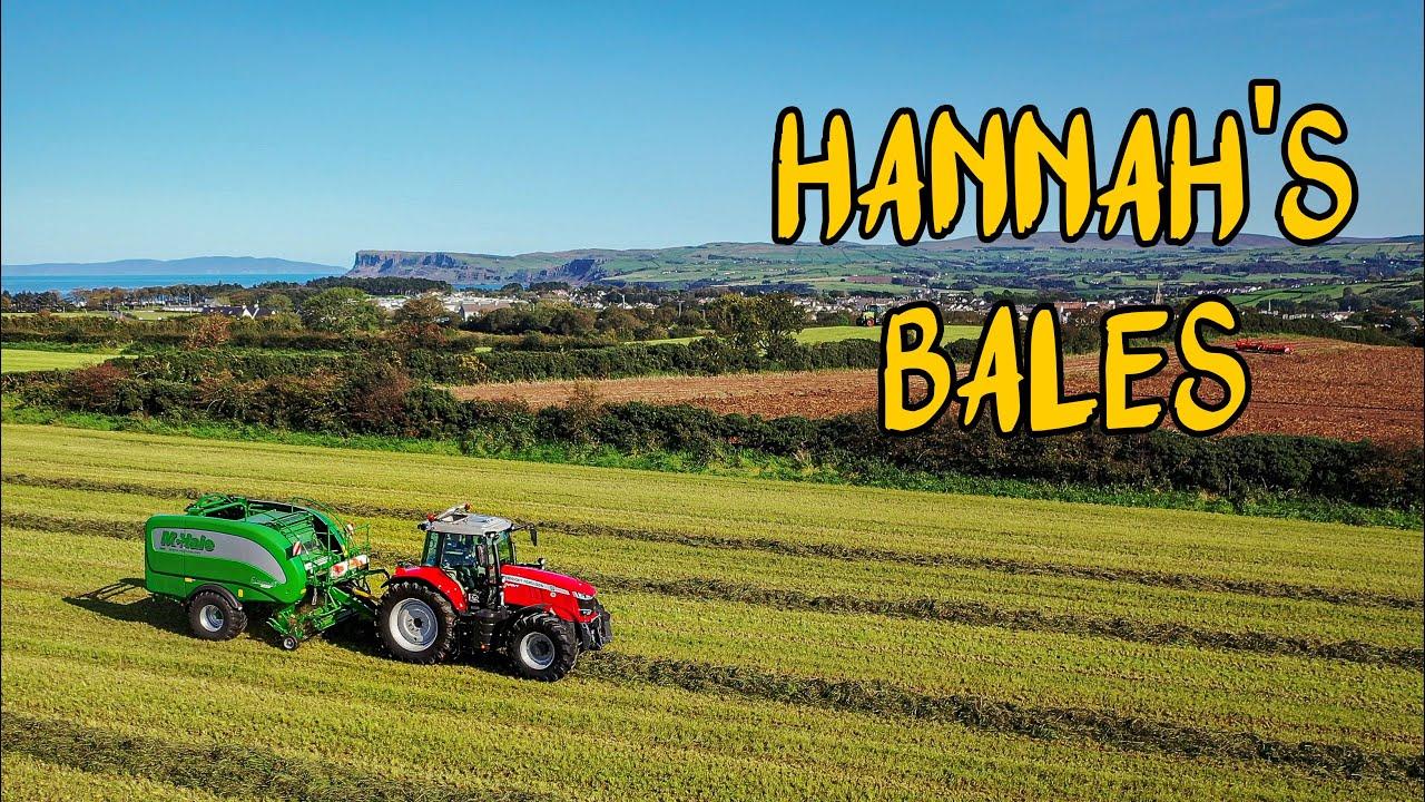 Hannah's Bales