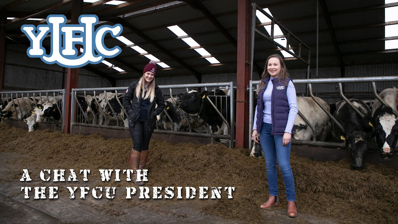 A Chat with YFCU President Zita McNaugher!