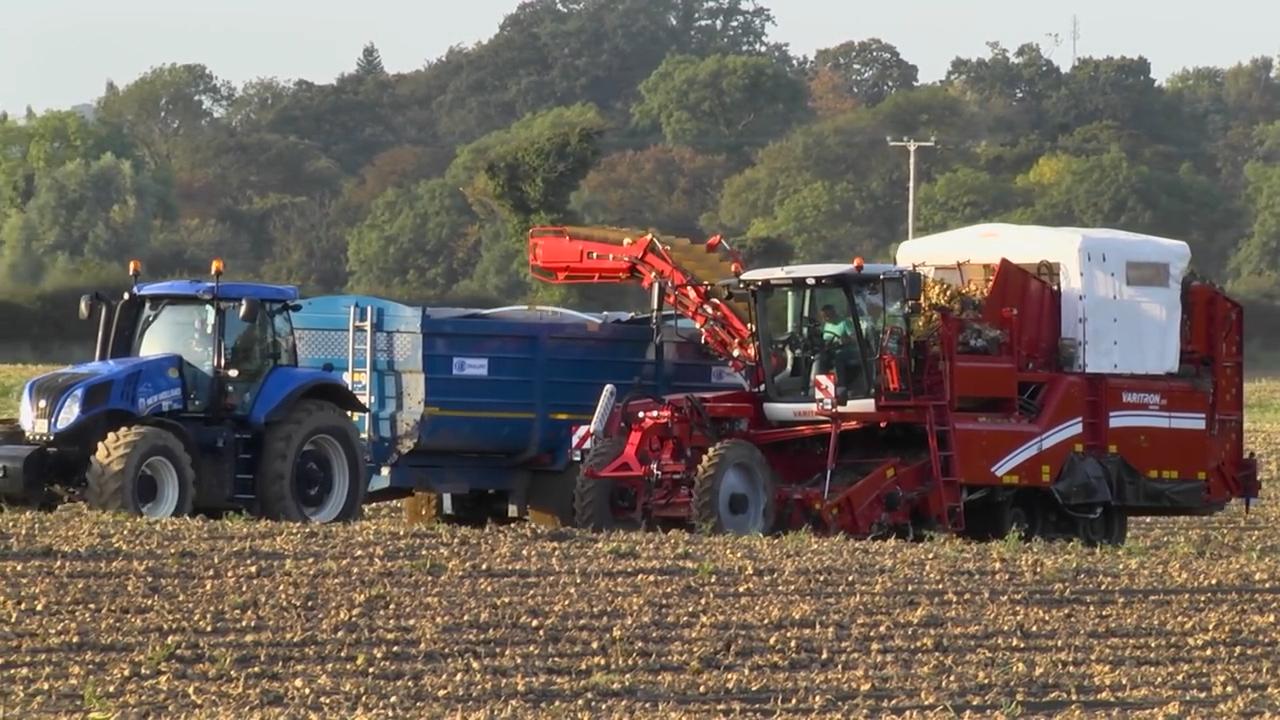 GRASSMEN VLOG - Country Crest Onion Harvesting