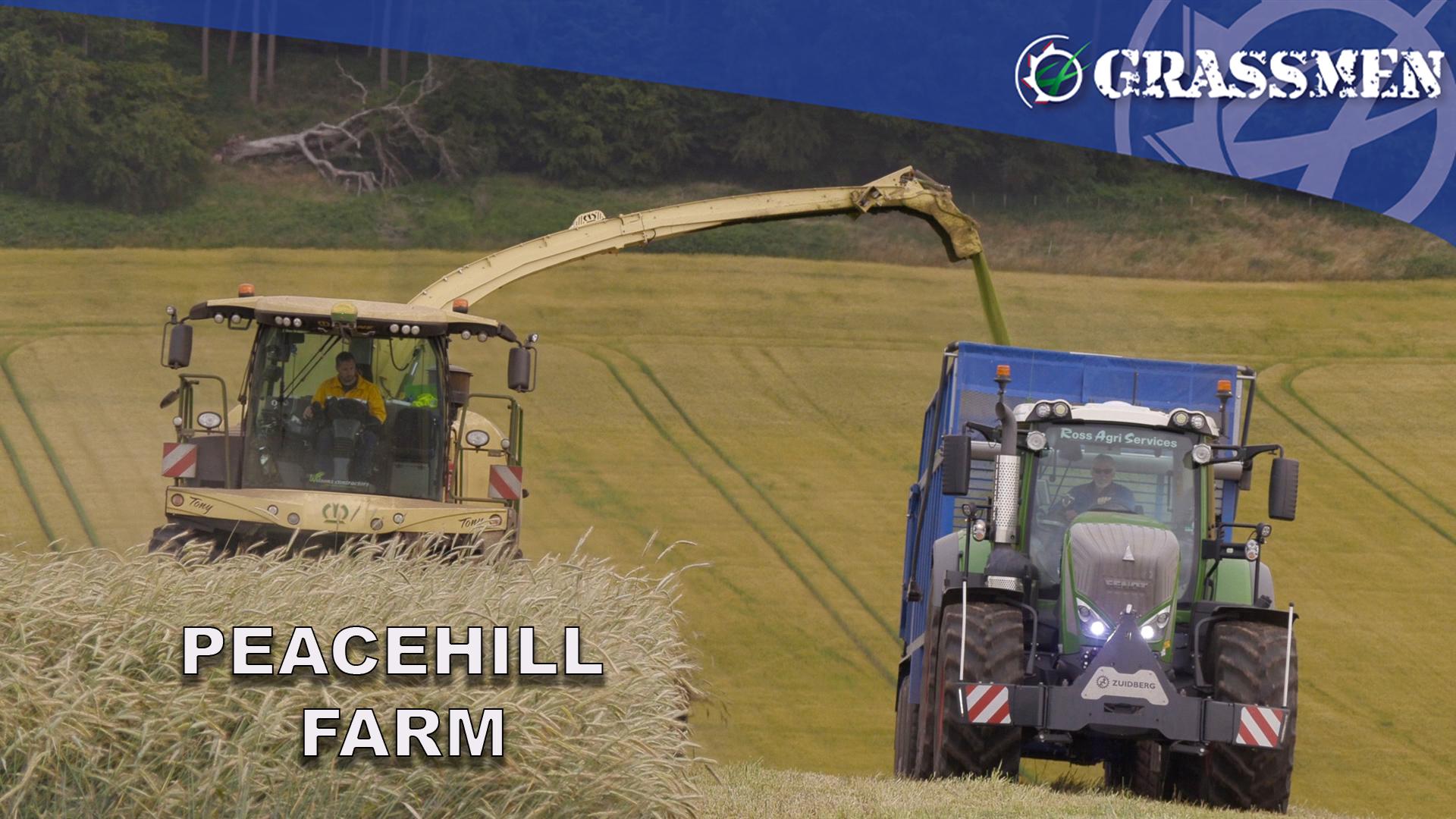 Peacehill Farm