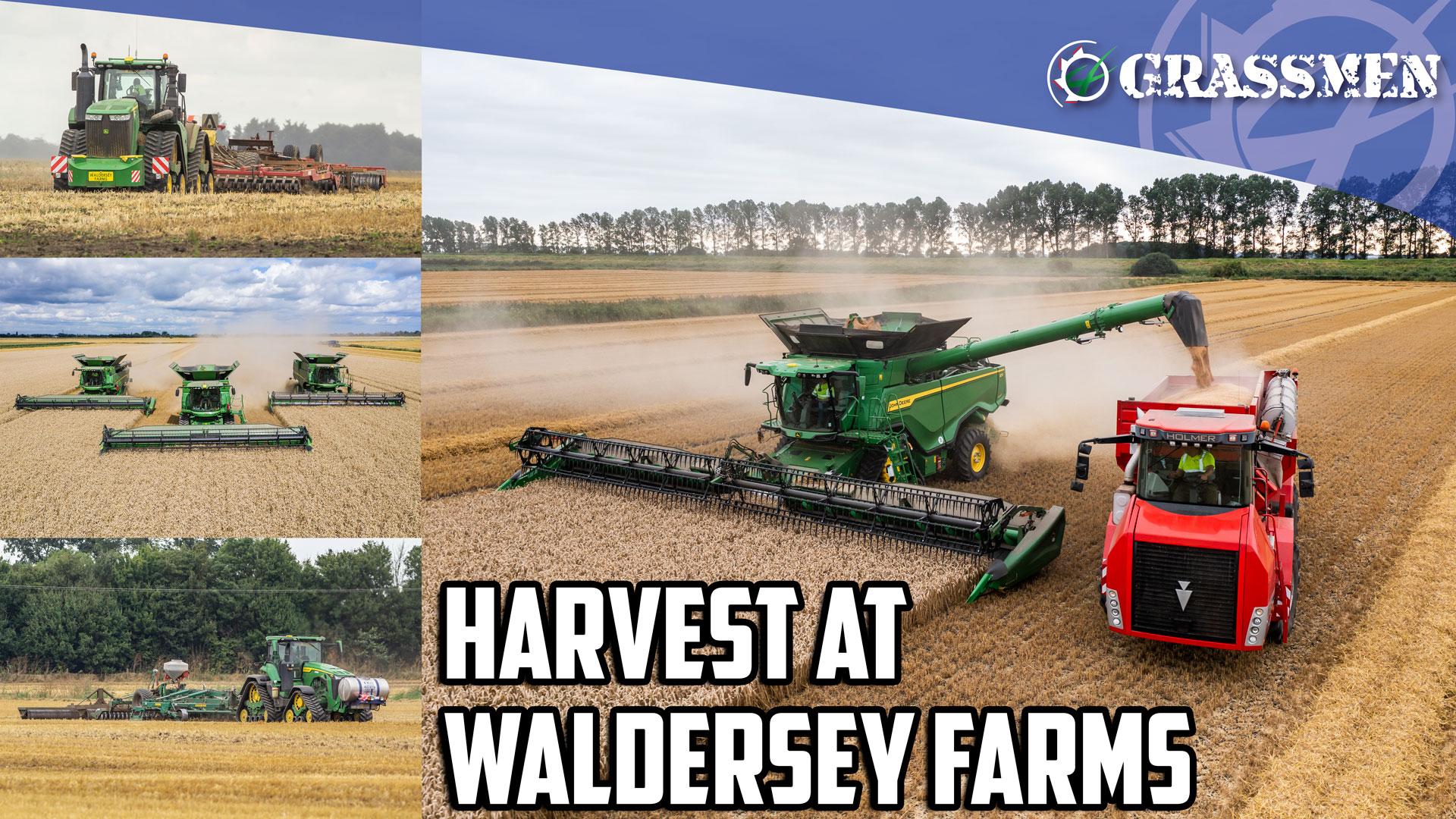 Harvest at Waldersey Farms!